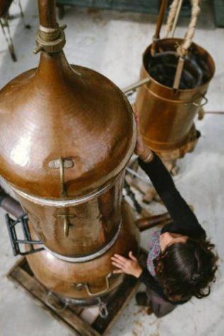dans distillation (3)
